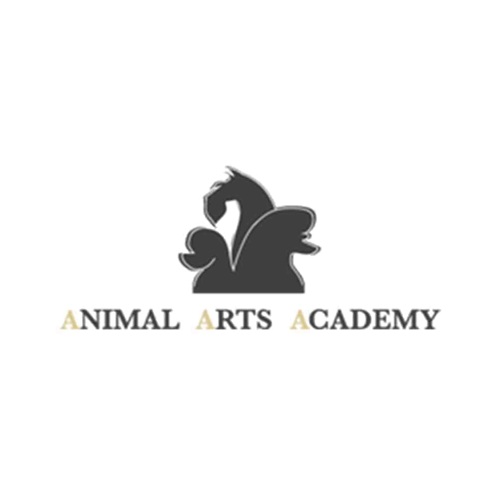 Animal Arts Academy