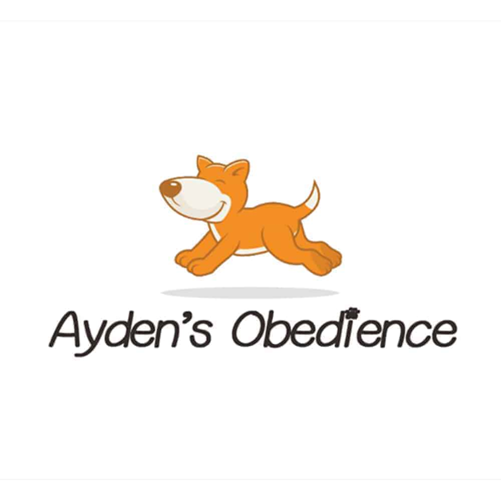 Ayden's Dog Obedience Training