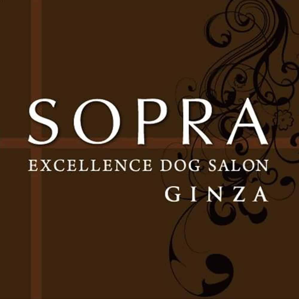 Pet Salon Sopra Ginza