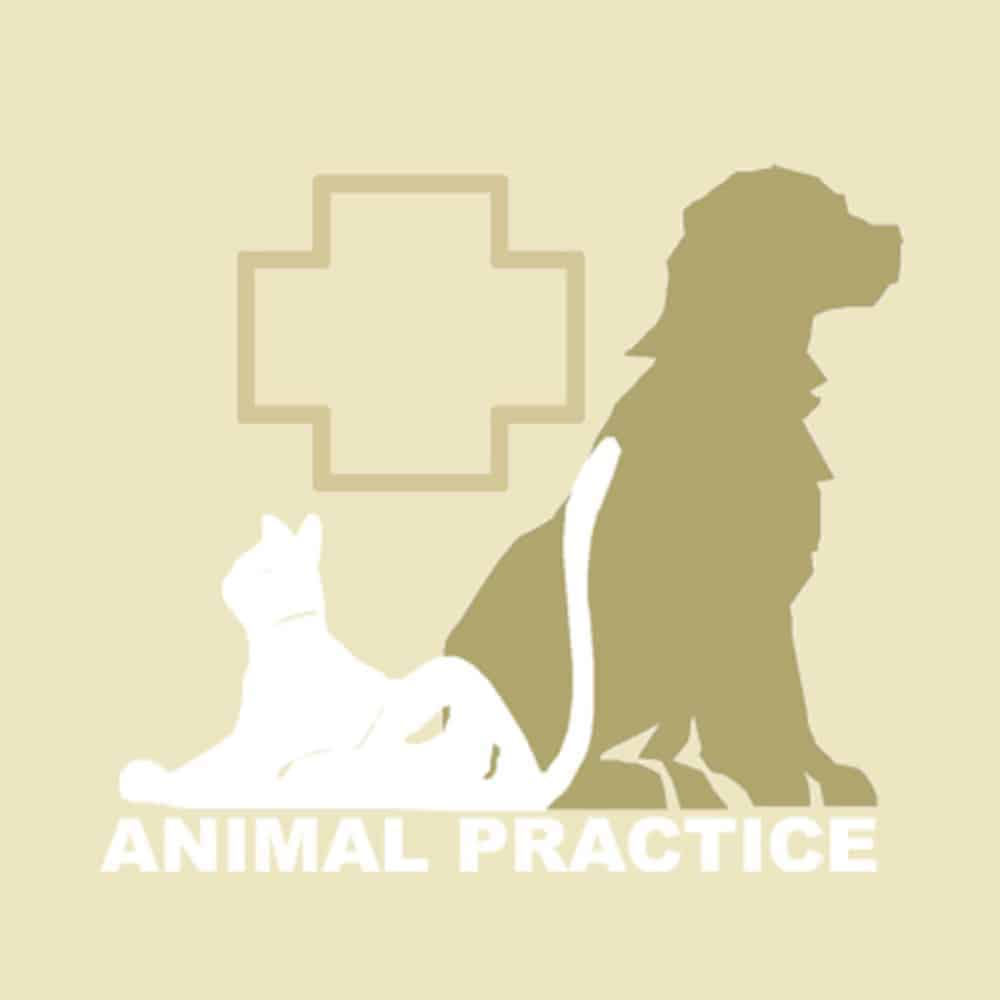 The Animal Practice