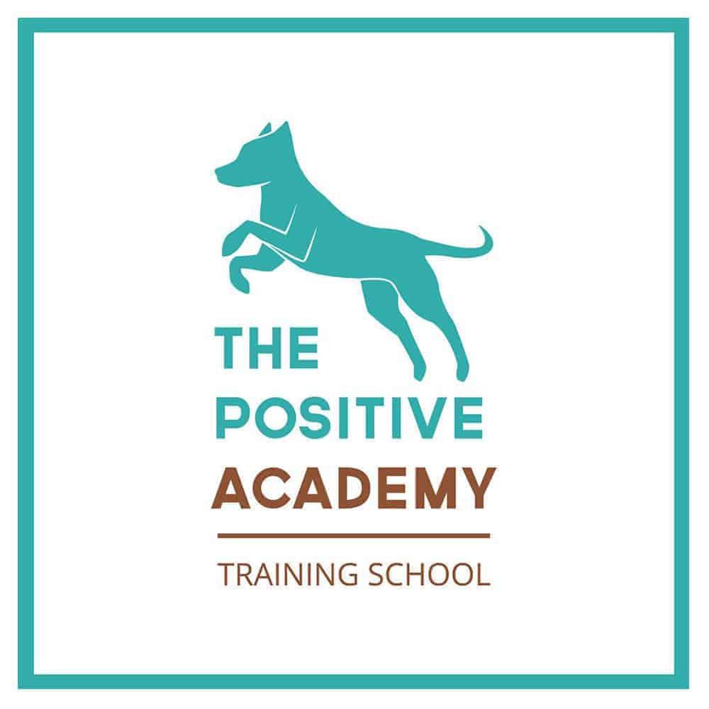 The Positive Academy Training School