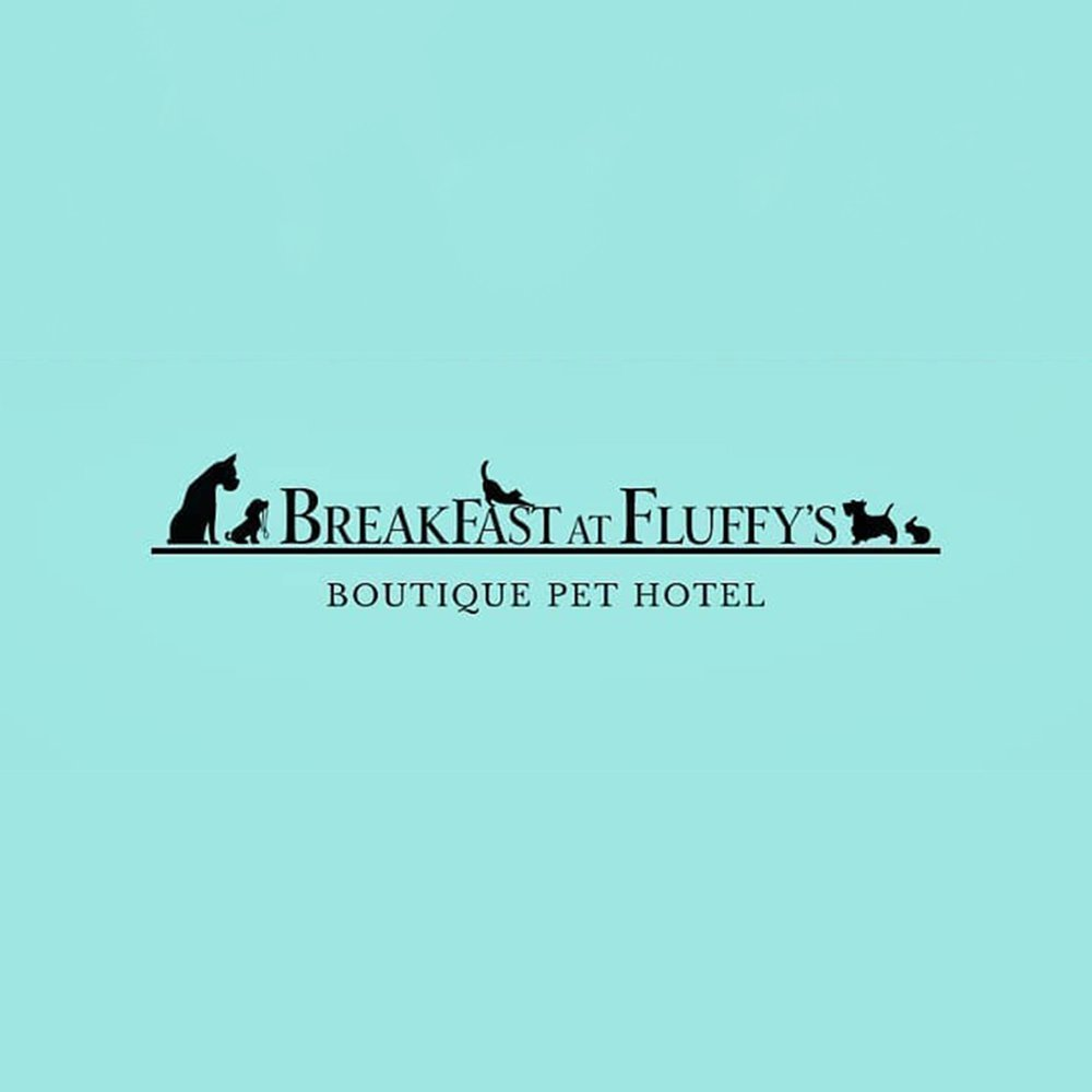 Breakfast at Fluffy's Boutique Pet Hotel
